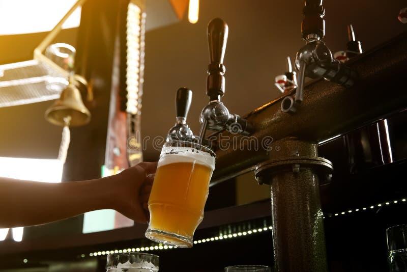 Hällande öl för bartender från klappet in i exponeringsglas royaltyfria foton