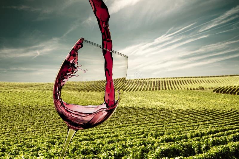 Hällande rött vinexponeringsglas royaltyfri fotografi