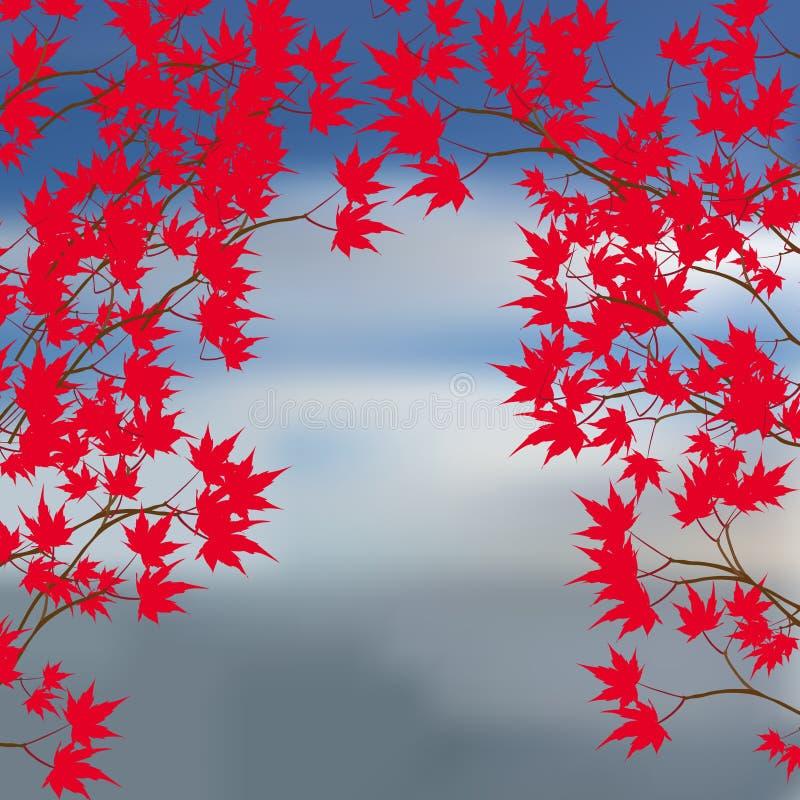 Hälsningkort av höstlandskapet Röda lönnlöv på filialerna på antingen sida Japansk röd lönn på a stock illustrationer