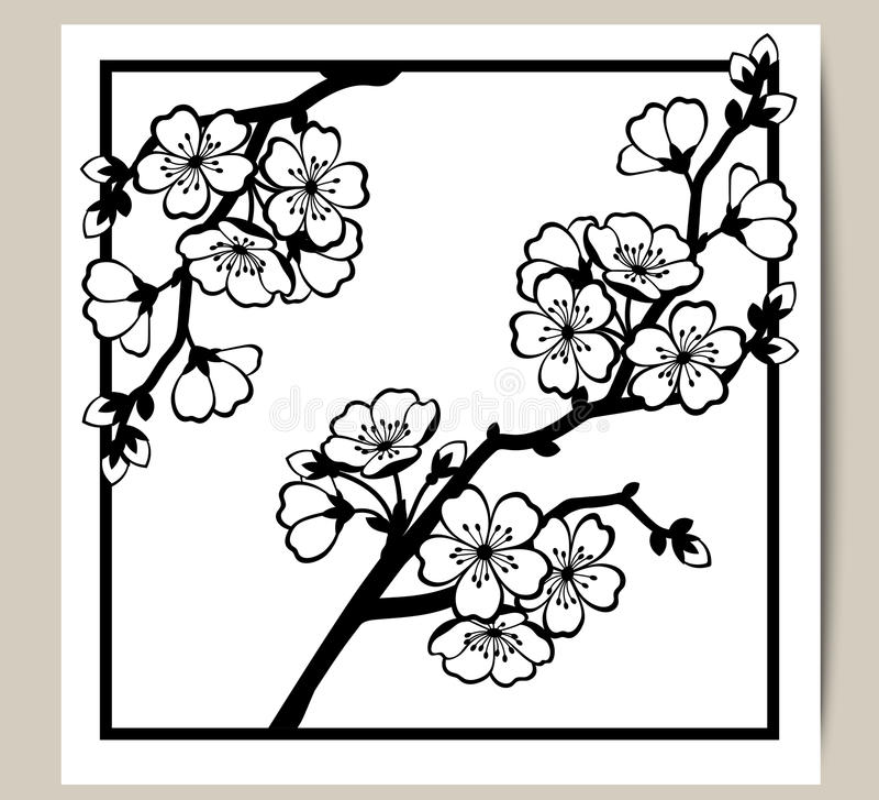 Hälsningkort med en filial av körsbärsröda blomningar royaltyfri illustrationer