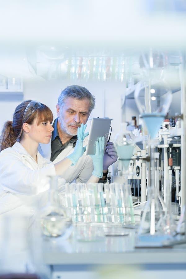 Hälsovårdforskare som arbetar i vetenskapligt laboratorium royaltyfria bilder