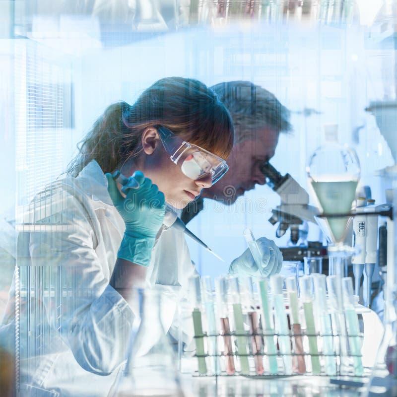 Hälsovårdforskare som arbetar i vetenskapligt laboratorium royaltyfri bild