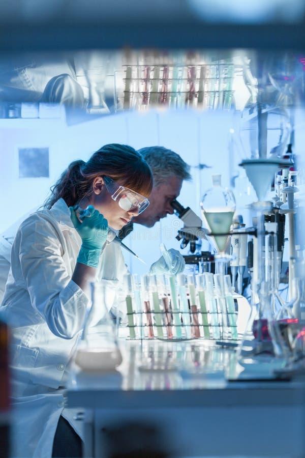 Hälsovårdforskare som arbetar i vetenskapligt laboratorium arkivbilder