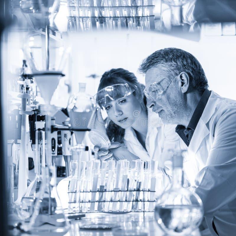 Hälsovårdprofessionell som forskar i vetenskapligt laboratorium royaltyfria foton