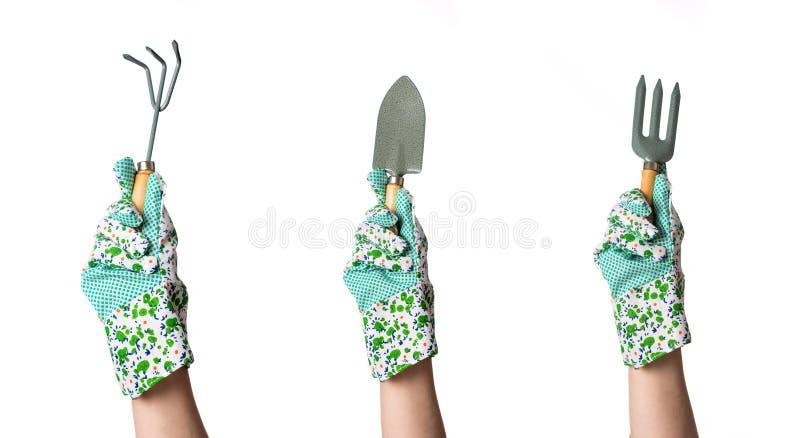 Hände in den Gartenhandschuhen, die Gartenarbeitwerkzeug halten stockfotografie