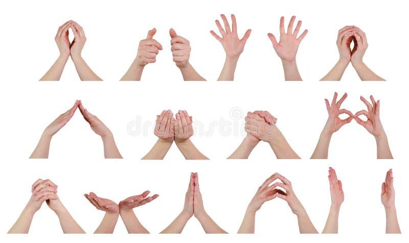 Hände in den Haltungen stockfotos