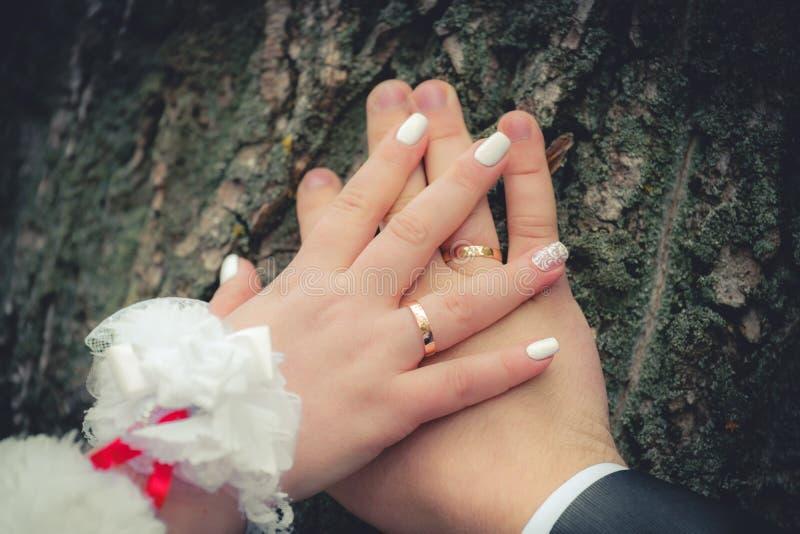 Hände der Braut und des Bräutigams auf einem Baumstamm stockbild