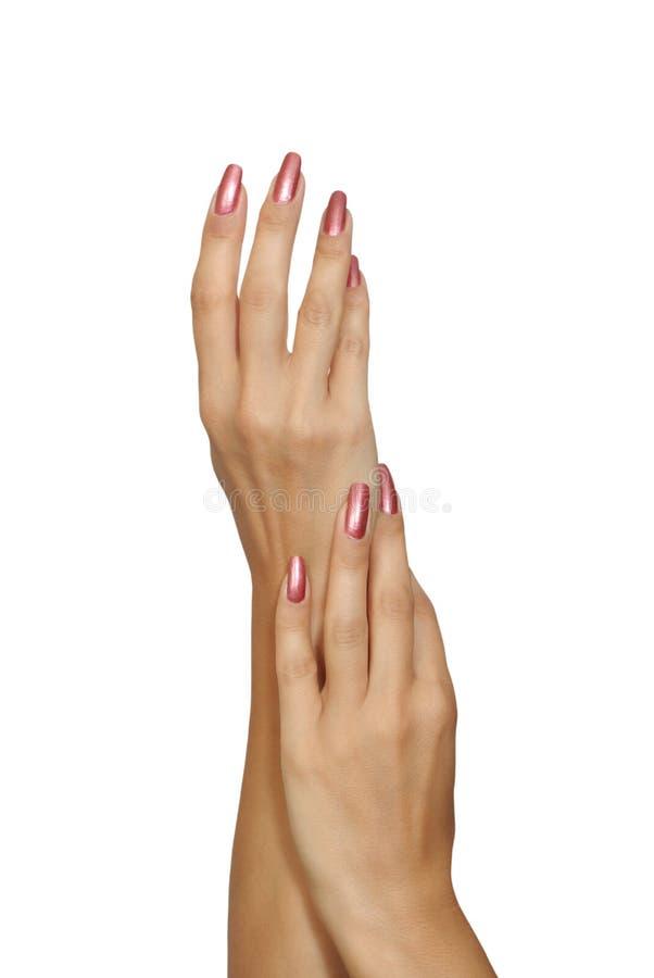 Hände der Frau stockbild