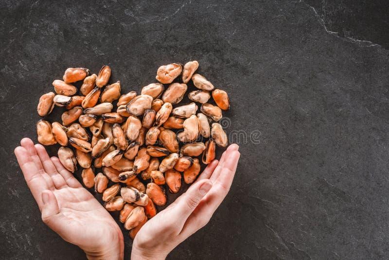 Hände, die in Form gefrorene abgezogene Miesmuscheln des Herzens über Schiefersteinhintergrund halten Meeresfrüchte, Draufsicht,  lizenzfreie stockfotos