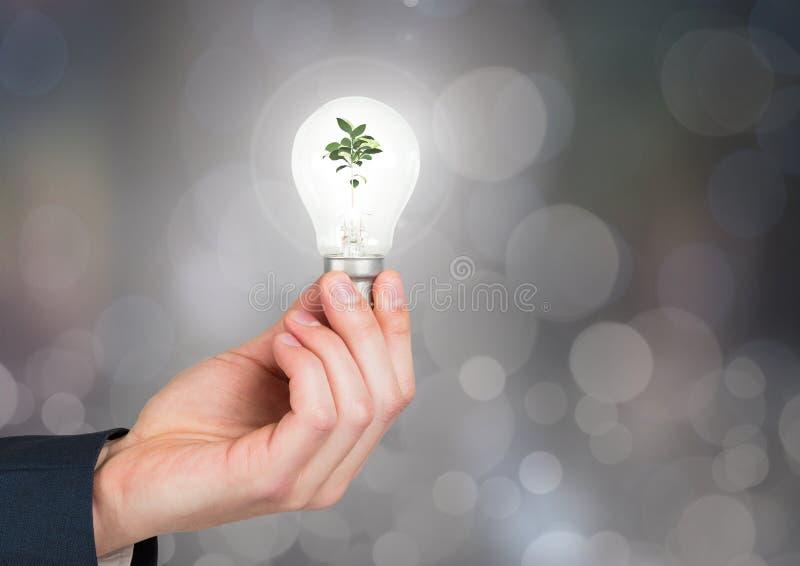 Hände, die Glühlampe mit grüner Naturenergie mit funkelndem hellem bokeh Hintergrund halten vektor abbildung