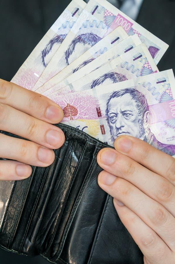 Hände, die Mappe mit Geld anhalten lizenzfreie stockfotografie