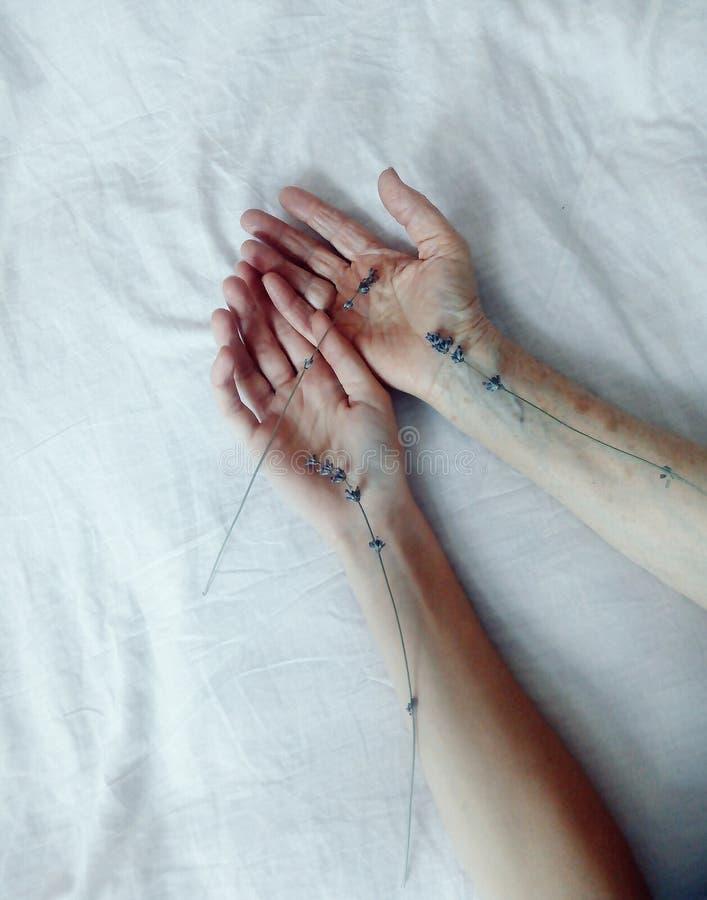Hände einer jungen und älteren Frau erreichen heraus miteinander Vertikaler Schuss stockfoto