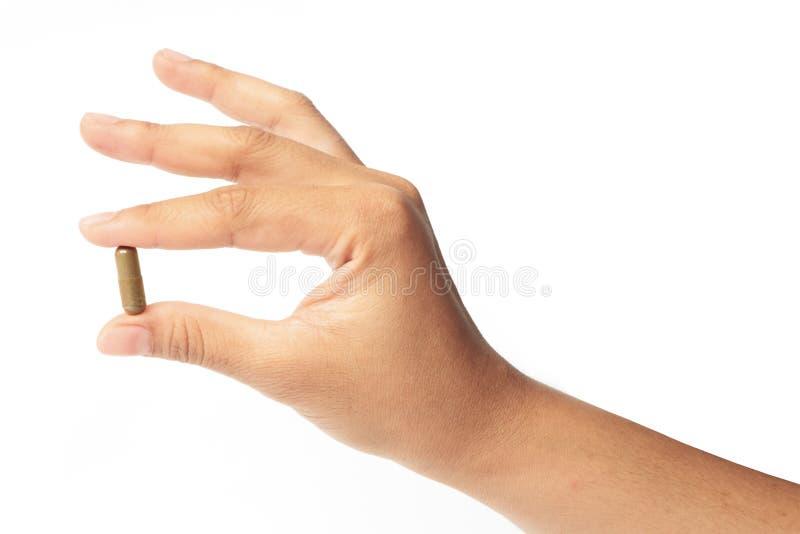 Hände mit einem Pillenkraut stockfoto