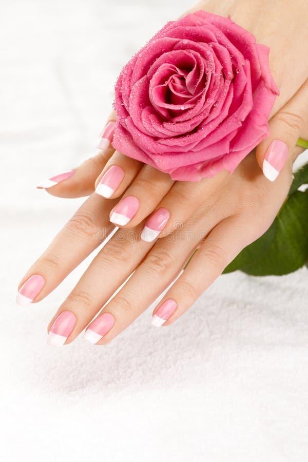 Hände mit einer Rose stockfotografie