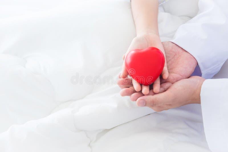 Händer av barn- och mandoktorn som rymmer röd hjärta, klumpa ihop sig tillsammans arkivfoton