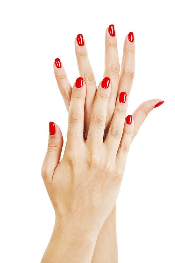 Händer av en ung kvinna med lång röd manikyr spikar på arkivbild