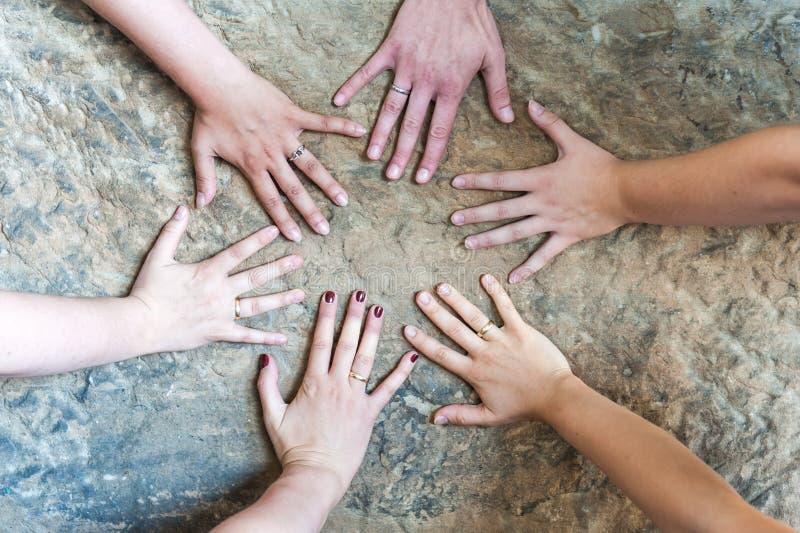 Händer av gifta kvinnor med kvinnor vigselringar/en utan cirkel royaltyfri bild