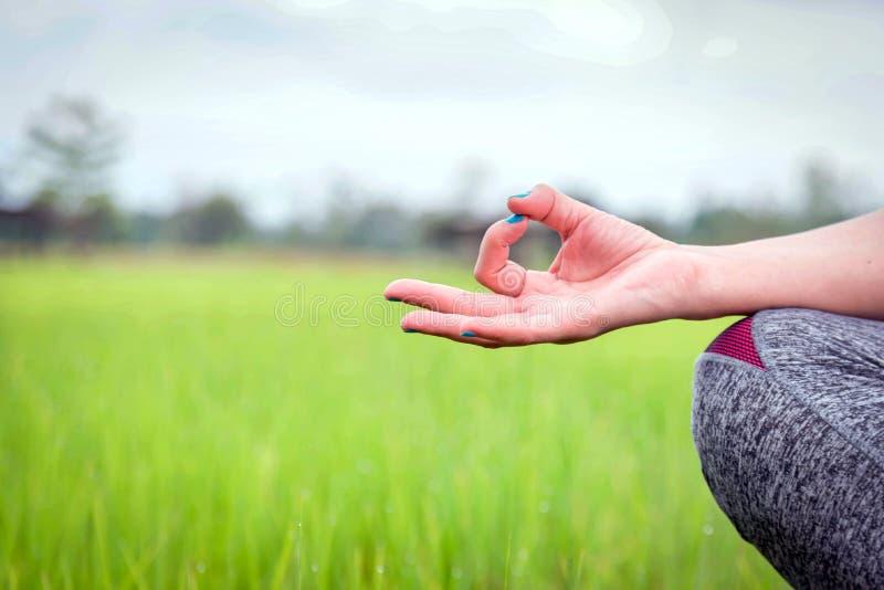 Händer av kvinnan som mediterar i en yoga, poserar på det gröna fältet arkivfoton