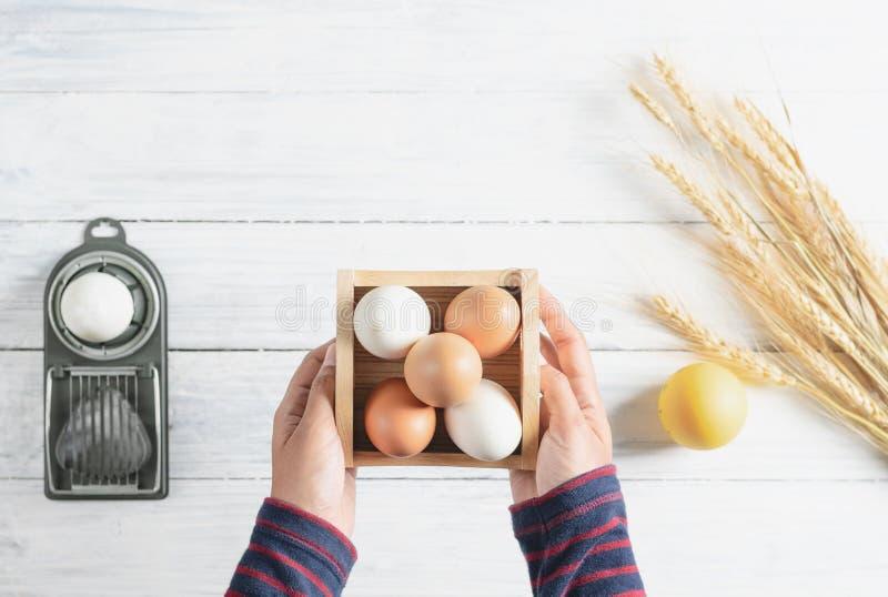 Händer för bästa sikt som rymmer det fega ägget i asken, vit wood bakgrund royaltyfri foto