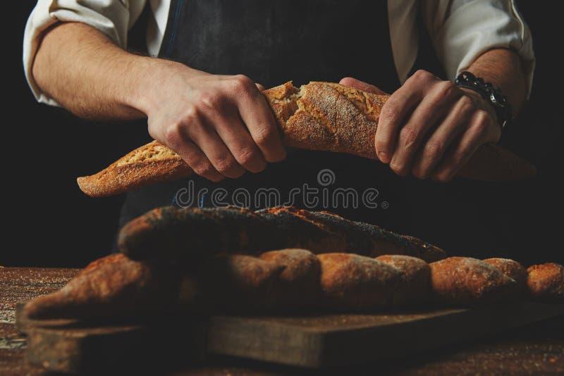 Händer för bagare` s bryter bagetten royaltyfri fotografi