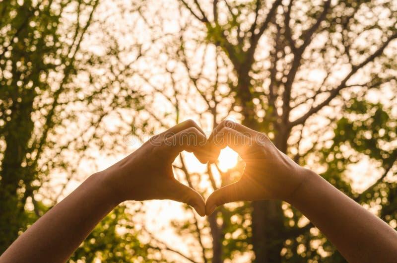 Händer i form av förälskelsehjärta och solsken royaltyfri bild