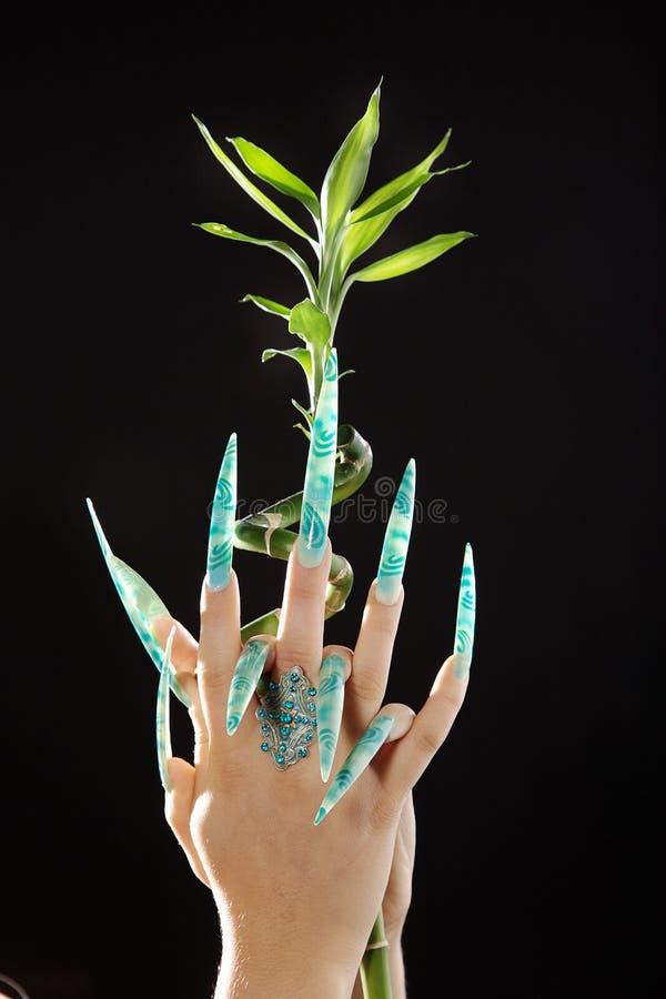 Händer och spikar länge i airbrushdesign fotografering för bildbyråer