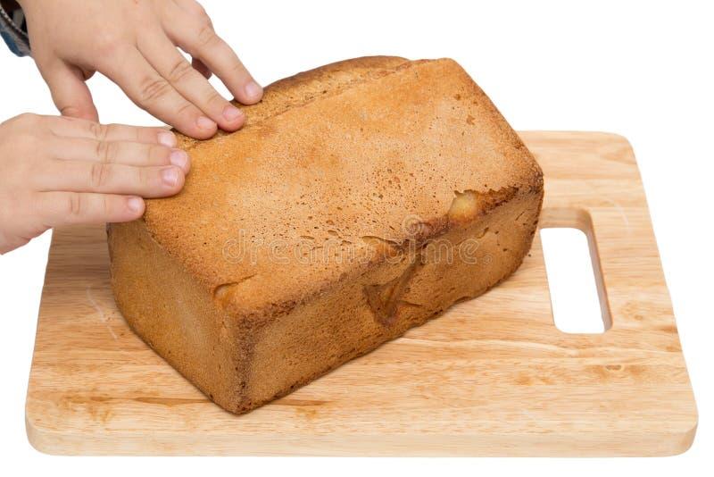Händer på bröd på ett bräde på en vit bakgrund royaltyfria bilder