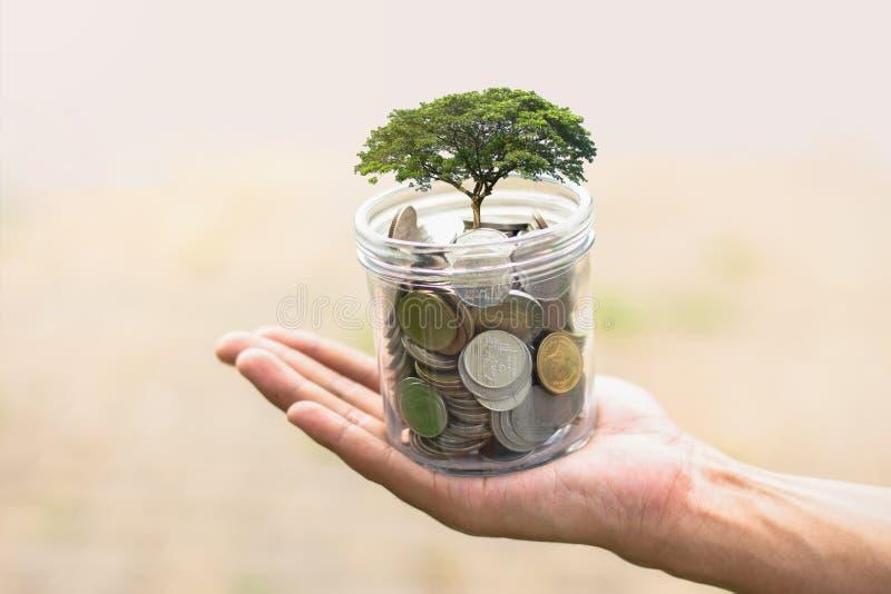 Händer som rymmer exponeringsglaskruset med mynt kassa för begreppsbesparingpengar arkivfoto