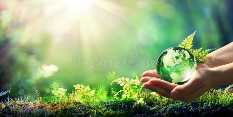 Händer som rymmer jordklotexponeringsglas i grön skog royaltyfria foton