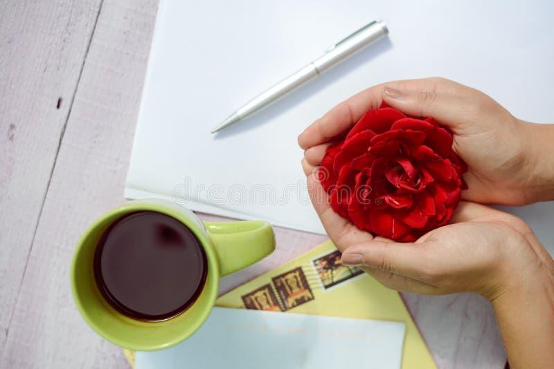 Händer som rymmer rosblomman omgiven med kaffe arkivfoton