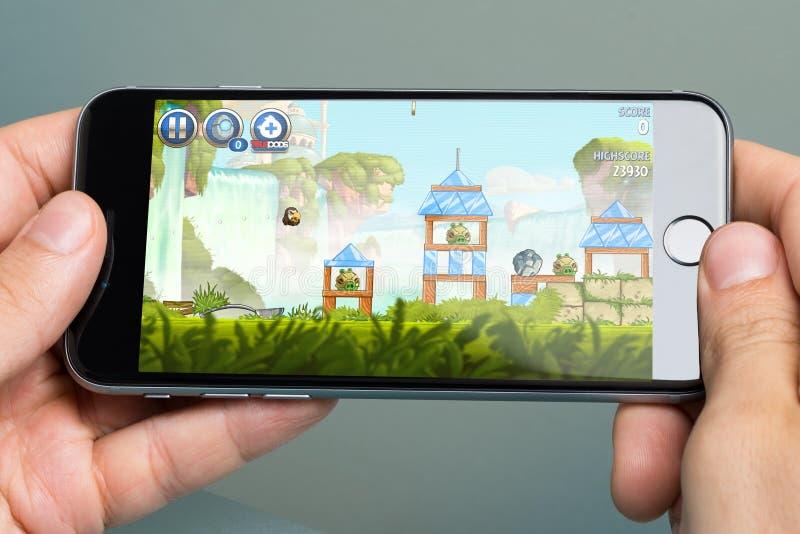 Händer som spelar ilskna fåglar, spelar på Apple iPhone6 royaltyfria foton
