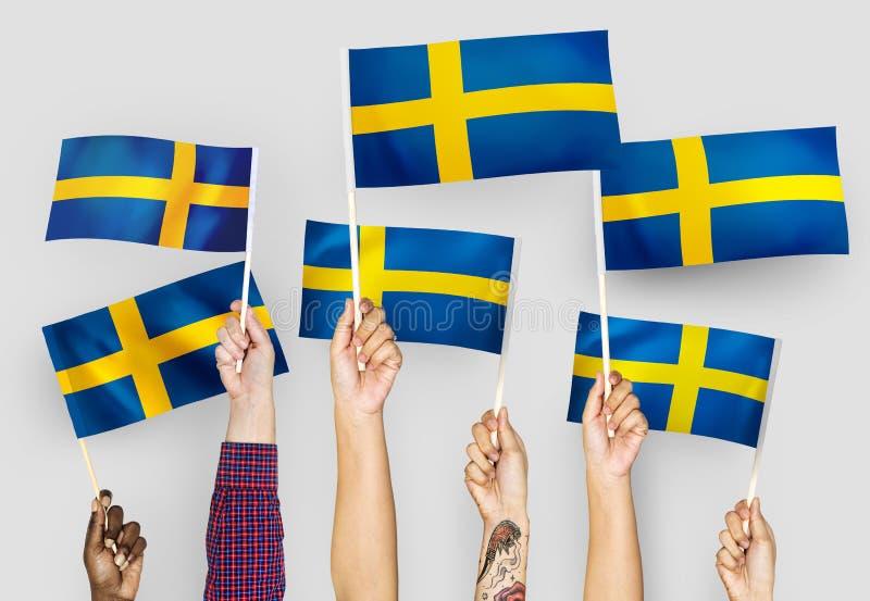 Händer som vinkar flaggorna av Sverige royaltyfri bild