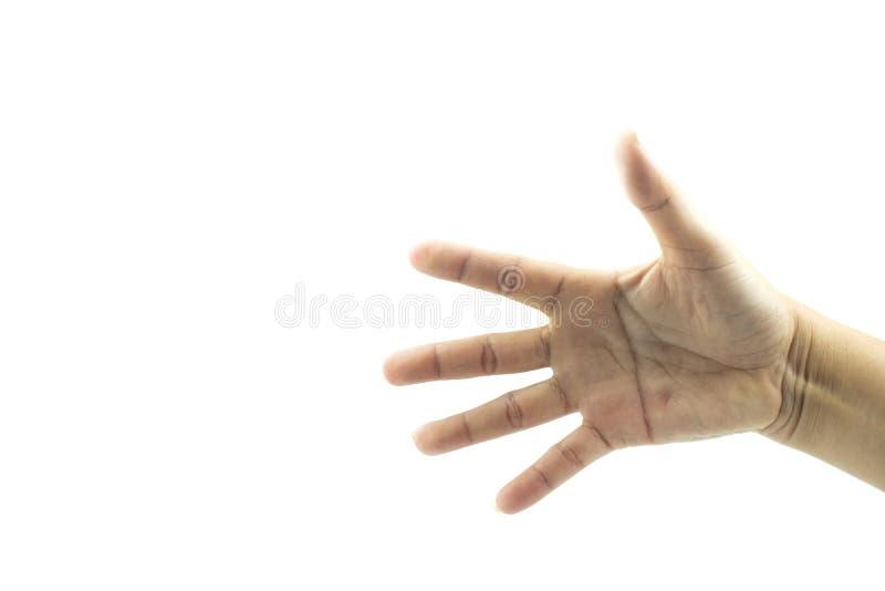Händer som visar gester royaltyfri foto