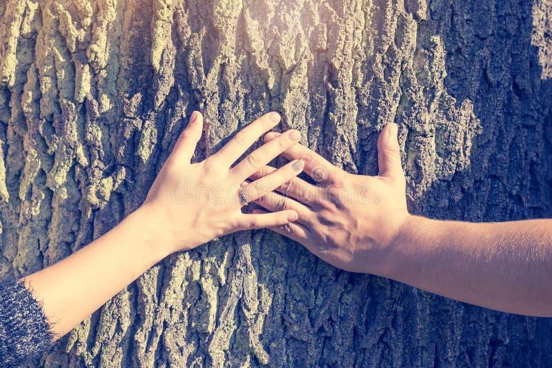 Händerna av en man och en kvinna som rymmer ett kors på en trädstam arkivfoto