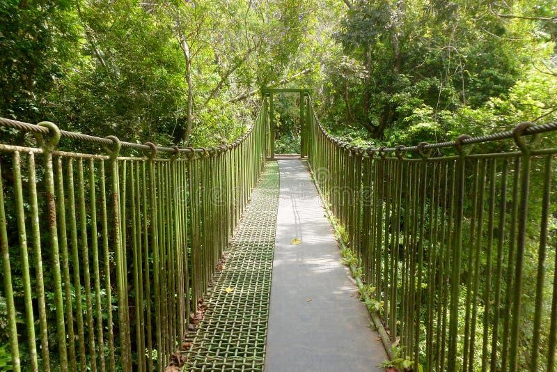 hänga för bro royaltyfri foto