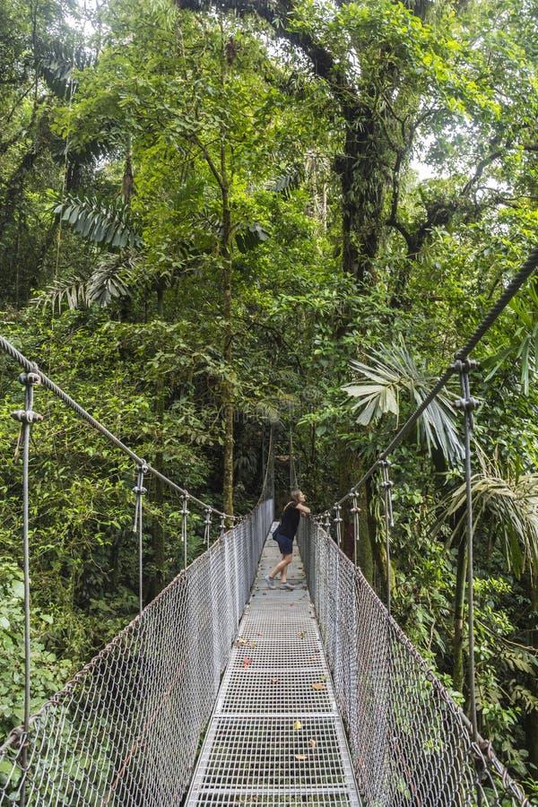 Hängande broar i den Costa Rica djungeln arkivfoton
