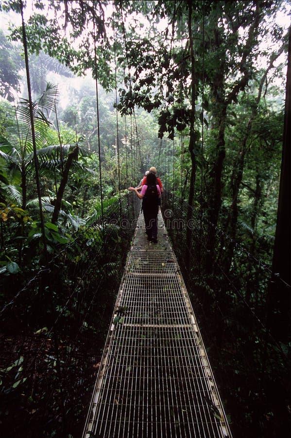 hängande fotvandrare för bro