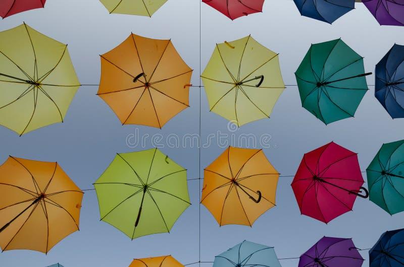 Hängande paraplyer mot en himmel i Novigrad, Kroatien, Europa royaltyfria foton