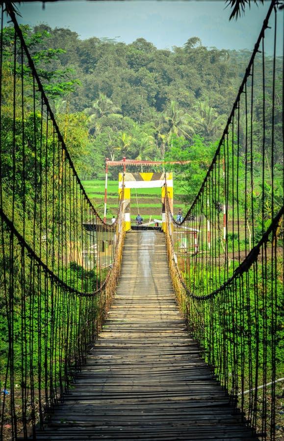 Hängebrücke, die den Fluss kreuzt stockfotografie