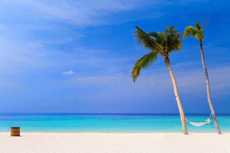 Hängematte auf einem tropischen Strand lizenzfreies stockfoto