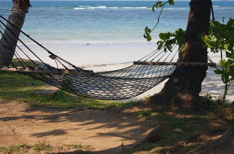 Hängematte auf tropischen Strandurlaubsortferien lizenzfreies stockbild
