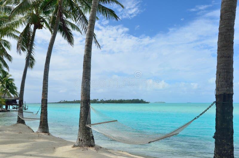 Hängematte auf tropischer Insel lizenzfreies stockfoto