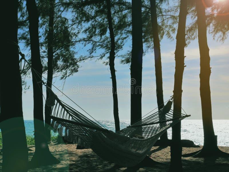 Hängematte mit Person an, gebunden an den Bäumen nahe bei sandigem Strand, in entspannender Umwelt des späten Nachmittages, fast  stockfotografie