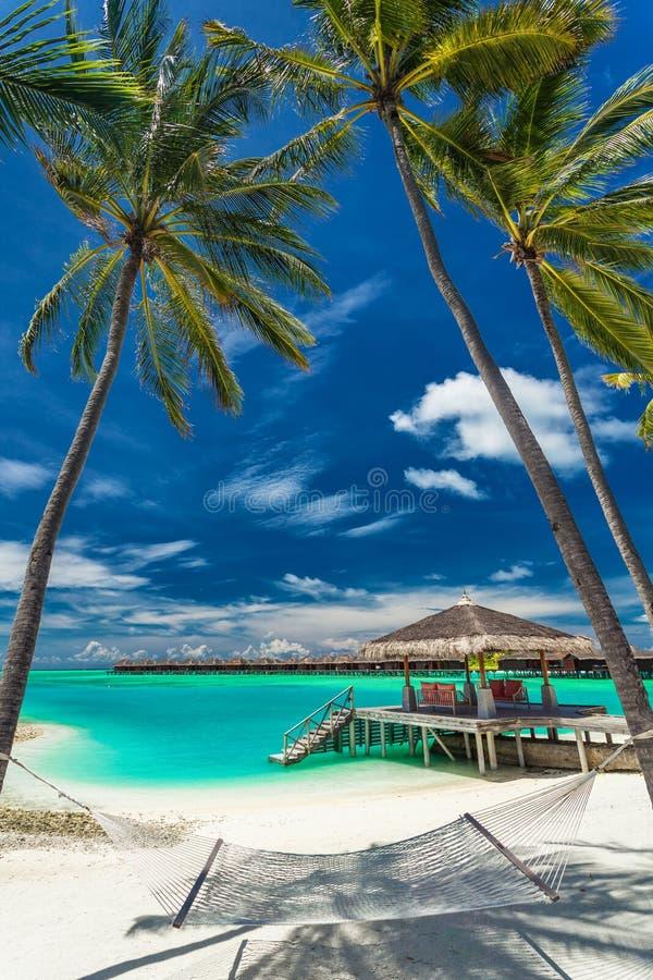 Hängematte zwischen Palmen auf einem tropischen Strand, Malediven stockfotos