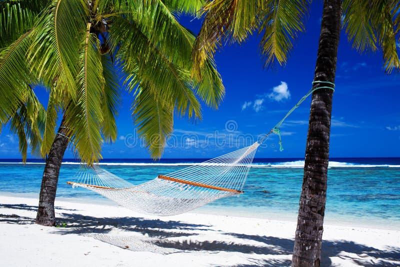 Hängematte zwischen Palmen auf tropischem Strand stockbilder