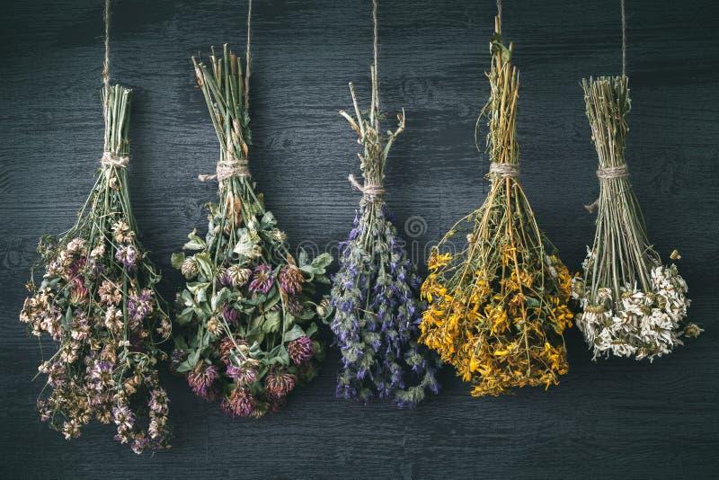 Hängende Bündel der medizinischen Kräuter und der Blumen Hypericum perforatum ist gerade, wie wirkungsvoll, wenn es Tiefstand beh lizenzfreie stockfotos