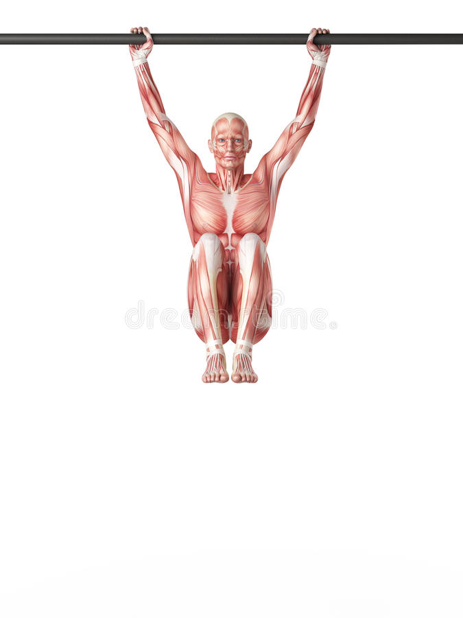 Hängende Beinerhöhungen stock abbildung