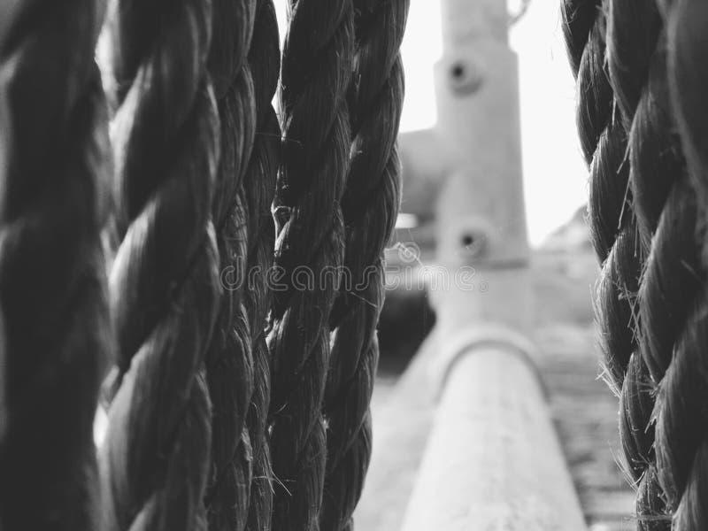 Hängende Seile auf Hafenstahlgeländern lizenzfreie stockfotografie