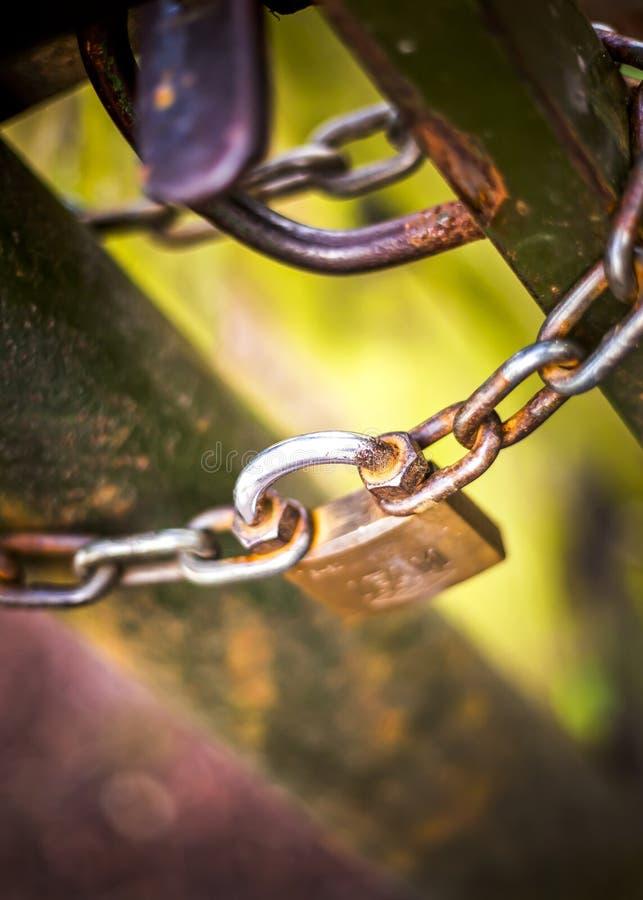 Hänglås och en metallkedja på ett järnstaket fotografering för bildbyråer