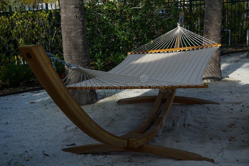 Hängmatta på en strand med palmträd som omger den royaltyfri foto
